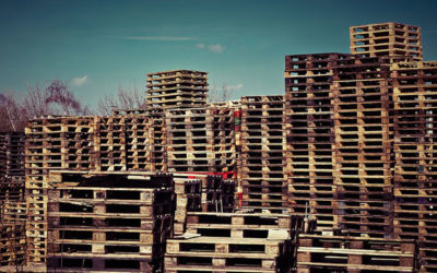 Plastic Pallets vs Wooden Pallets: Which is Better?
